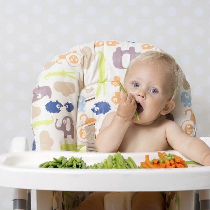 El desarrollo de los primeros años de vida del niño