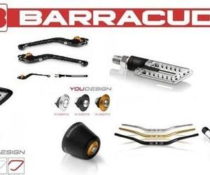 DISTRIBUIDORES TOP DEALER BARRACUDA