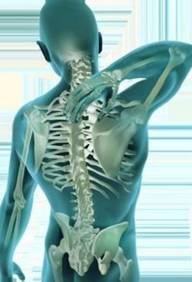 La fisioterapia empieza antes de que aparezca una lesión