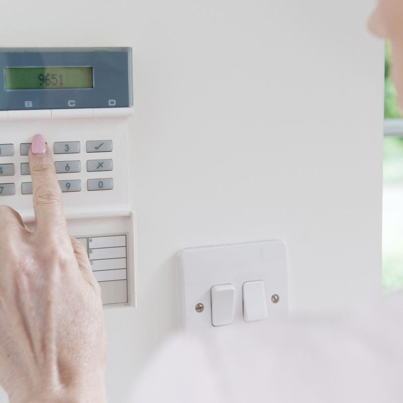 Servicios: Sistemas de seguridad de Graline, Sistemas de Seguridad