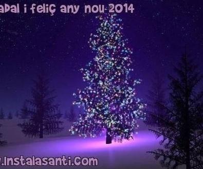 Bon Nadal i Feliç Any Nou 2014