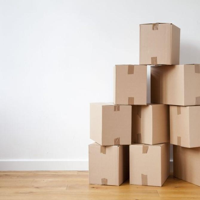 Cómo organizar tus cajas en tu mudanza
