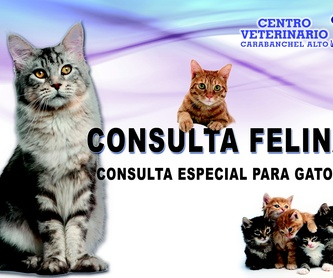 HOSPITALIZACIÓN Y URGENCIAS: Especialidades de Centro Veterinario Carabanchel Alto