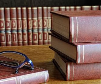 Bufete de abogados: Áreas de trabajo de Pedro A. Gómez Sainz, Abogado
