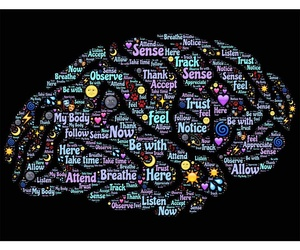 Psicoterapia congnitivo-conductual