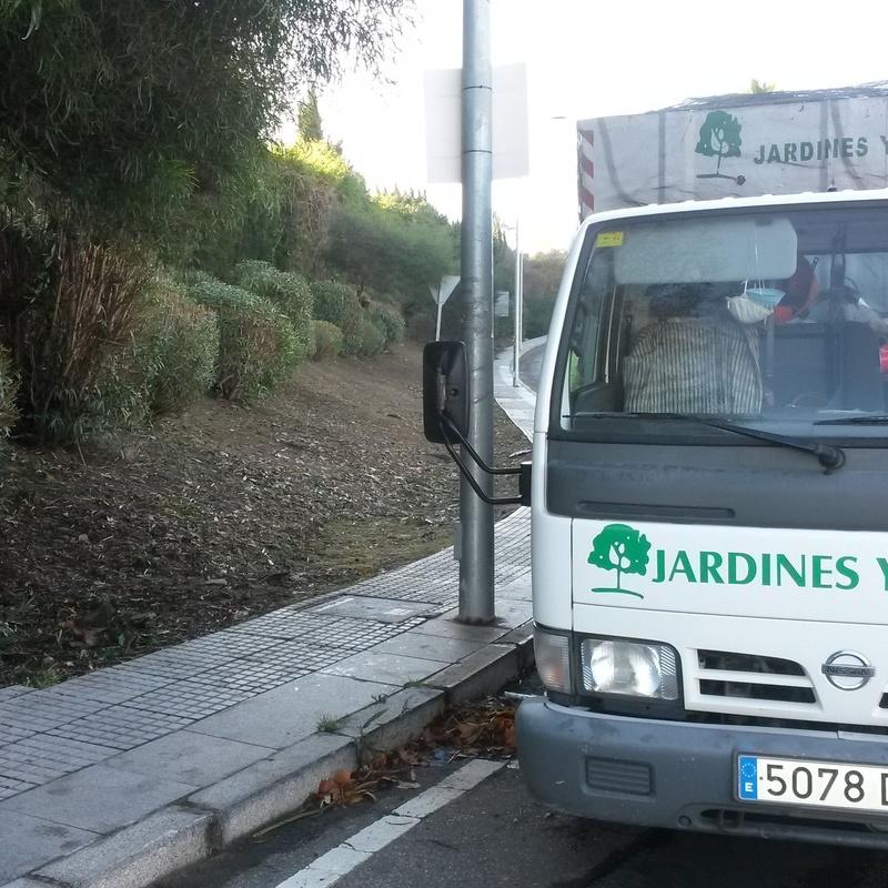 PODAS ,LIMPIEZA Y DESBROCE  DE TALUDES : Servicios de Jardines y paisajes