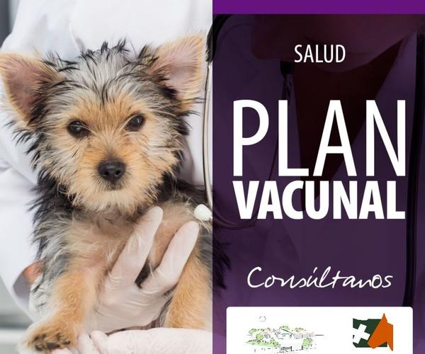 Veterinarios en San Agustín del Guadalix | Hospital Veterinario Sierra de Madrid