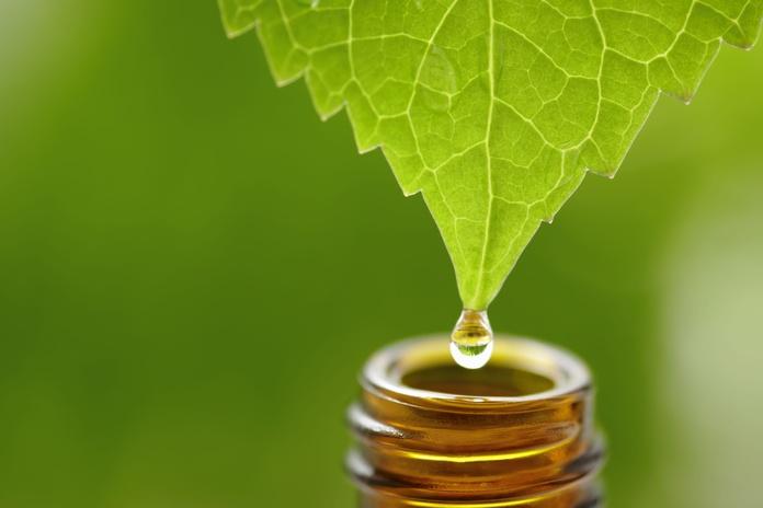 Naturopatía: Servicios de Clinika Physion