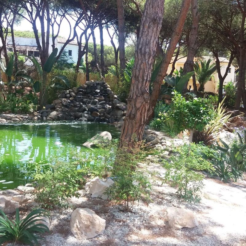 Lagos: Productos y servicios de Fantastic Gardens