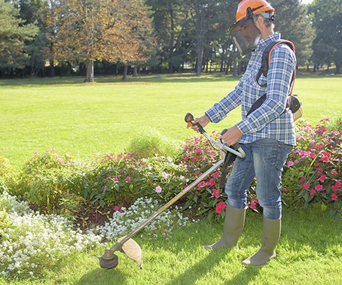 Jardines y Comunidades : Servicios de Enebro Servicios