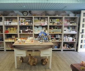 Venta de productos naturales en Durango