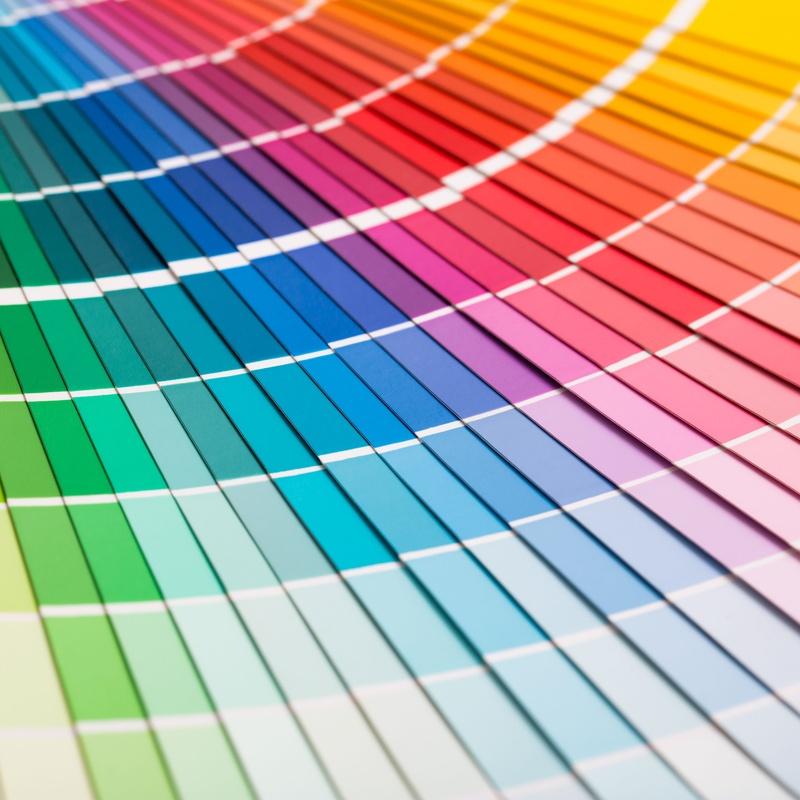 Estudio de coloración: Servicios de Paco Ruiz Pintors