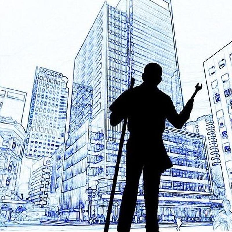 Trabajo con aseguradoras: Servicios de La Luna Azul