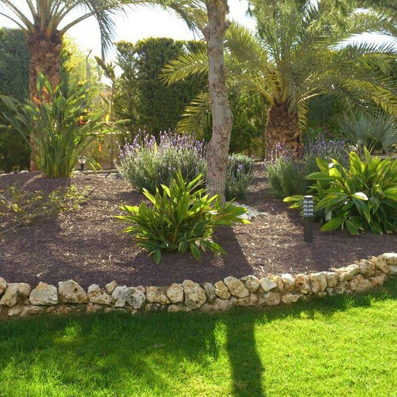 Jardinería y paisajismo: Servicios de Jardinería Pozo