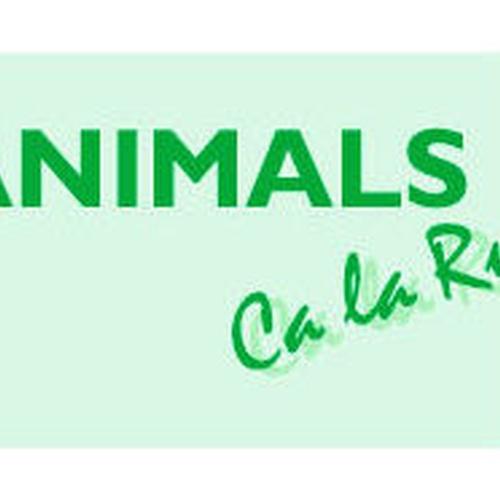 Peluqueria canina Caldes de Montbui