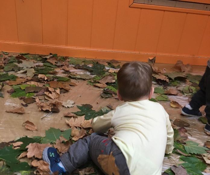 Jugando con las hojas secas