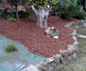 Mantenimiento de jardines en A Coruña