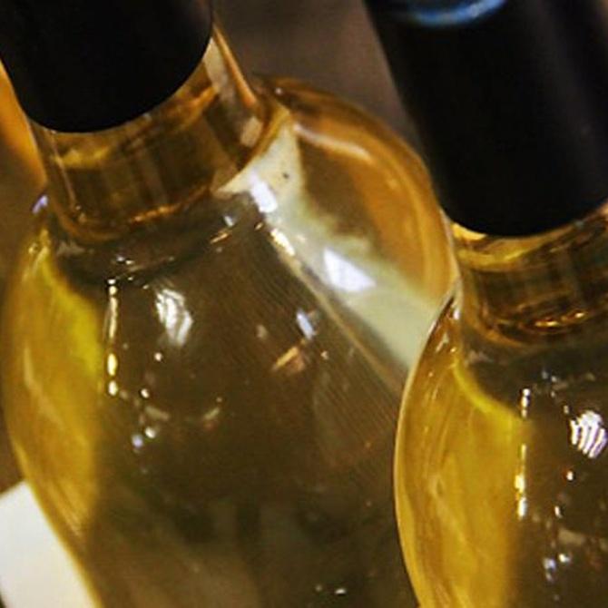 Conoce los excelentes vinos de Galicia