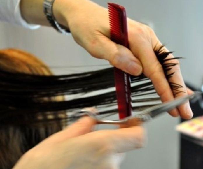 Ponte en manos de profesionales del cabello