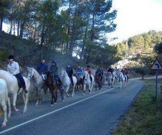 Rodajes y spots: Servicios de Equitación Peluca