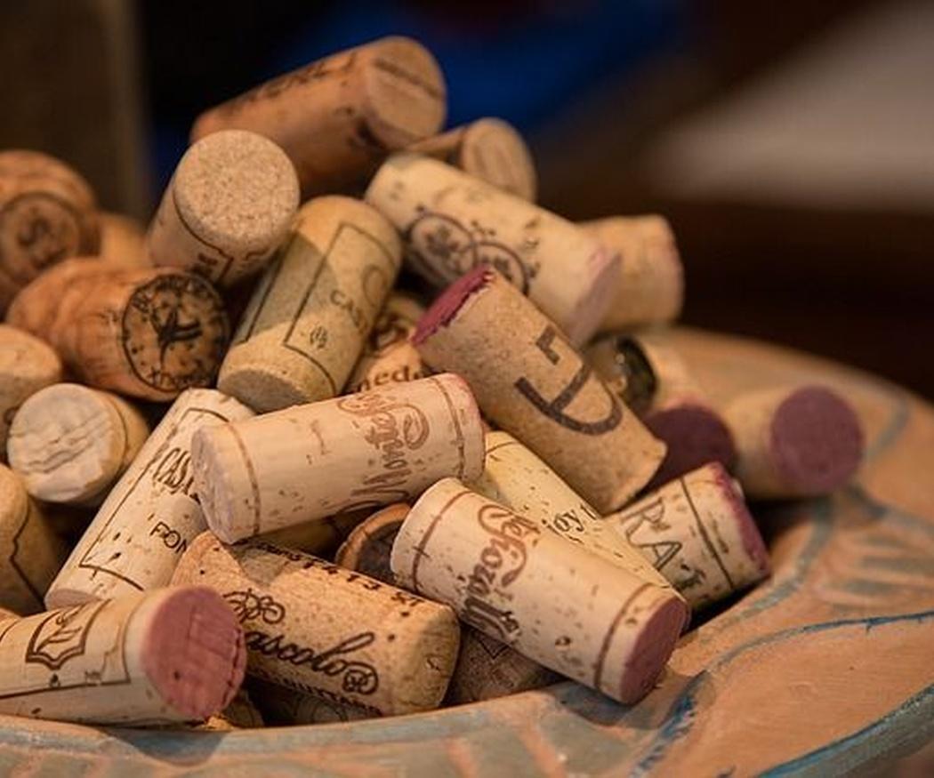 ¿Qué tal un vino?