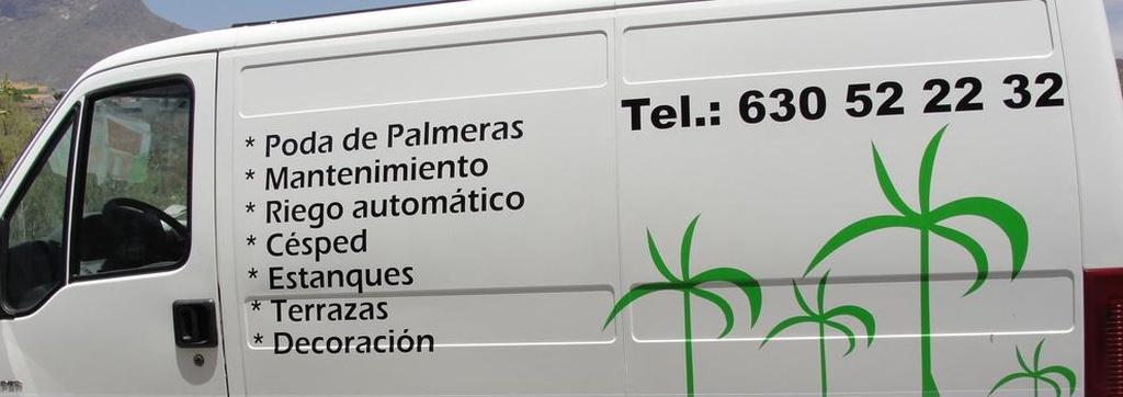 Poda de palmeras en Tenerife | Diseño y Mantenimiento de Jardines Tenerife