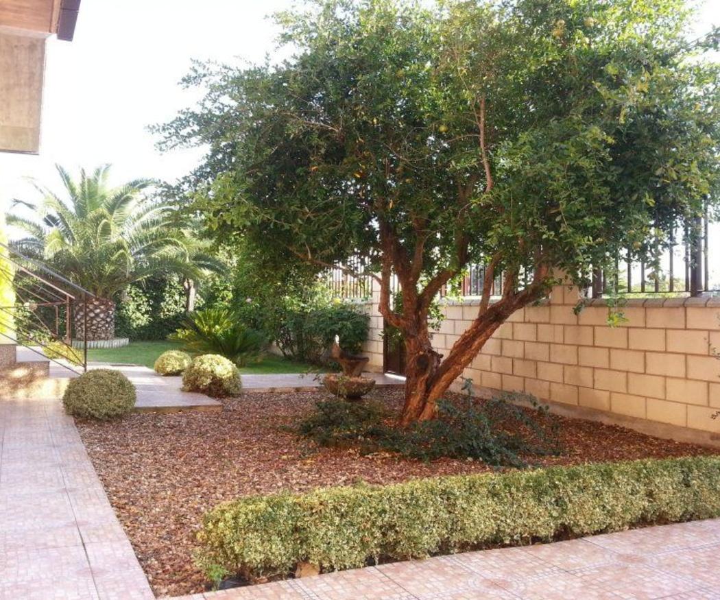 ¿Qué nos aporta tener un jardín en casa?