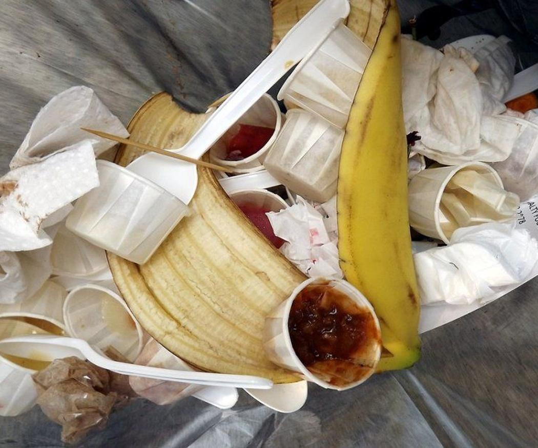 Problemas de salud causados por la basura