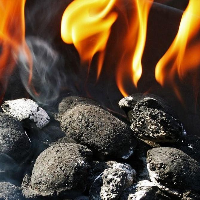 Las ventajas del carbón vegetal
