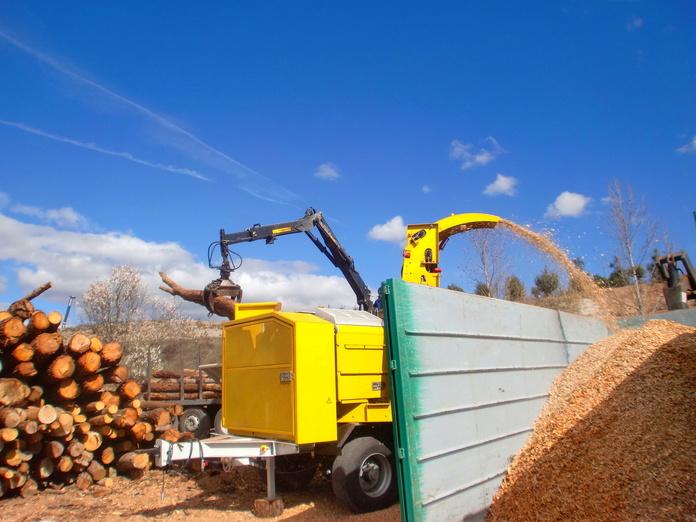 Producción de biomasa: Trabajos forestales de Moixent Forestal