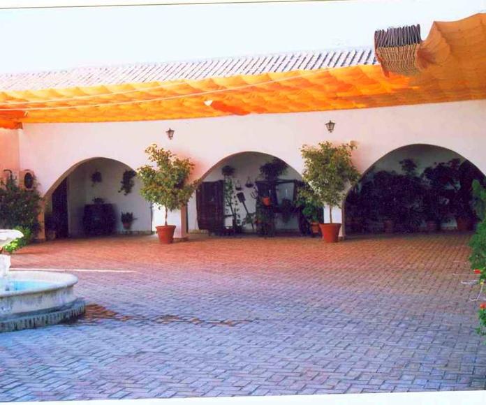 Patio Central : Servicios de Hacienda Mendieta