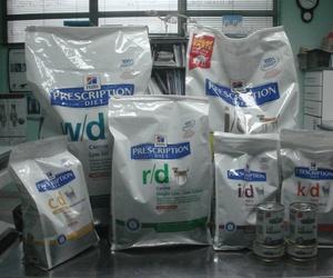 Todos los productos y servicios de Veterinarios: Argos Clínica Veterinaria