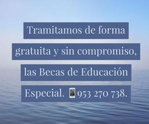 TRAMITAMOS GRATIS LAS BECAS DE EDUCACIÓN ESPECIAL