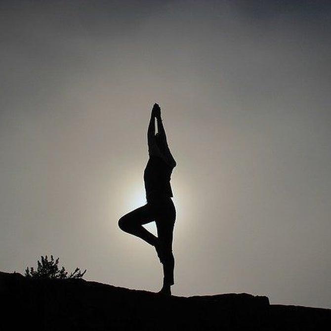 Encuentra el equilibrio a través del yoga
