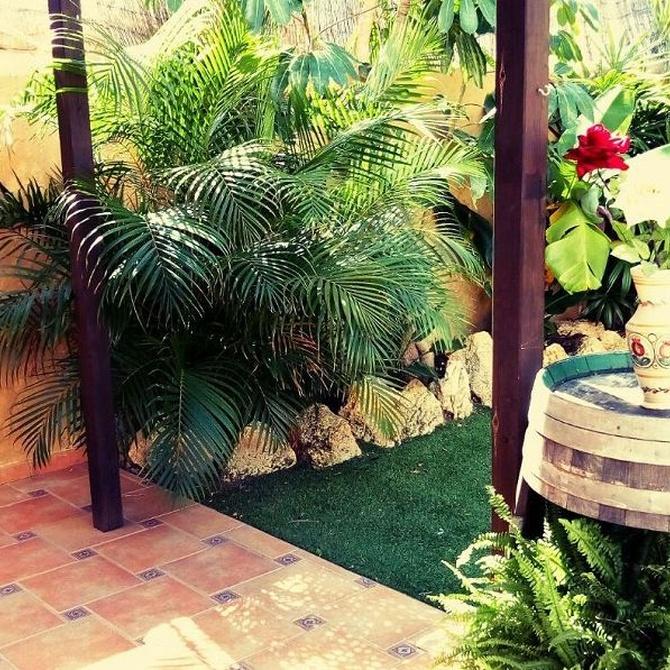 ¿Es buena la jardinería para los mayores?