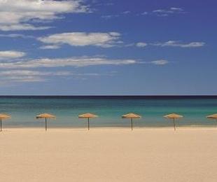 Restaurante con vistas al mar en Playa de Muchavista