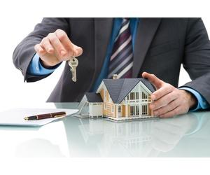 Todos los productos y servicios de Financieras: Tayler Financial, S.L.