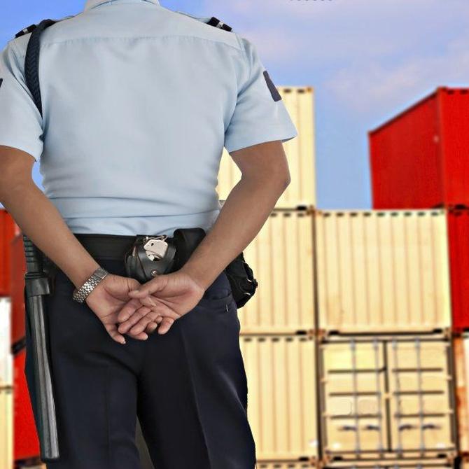 Los peligros de contar con vigilantes sin formación