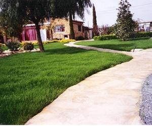 Empresas de jardinería en Valencia