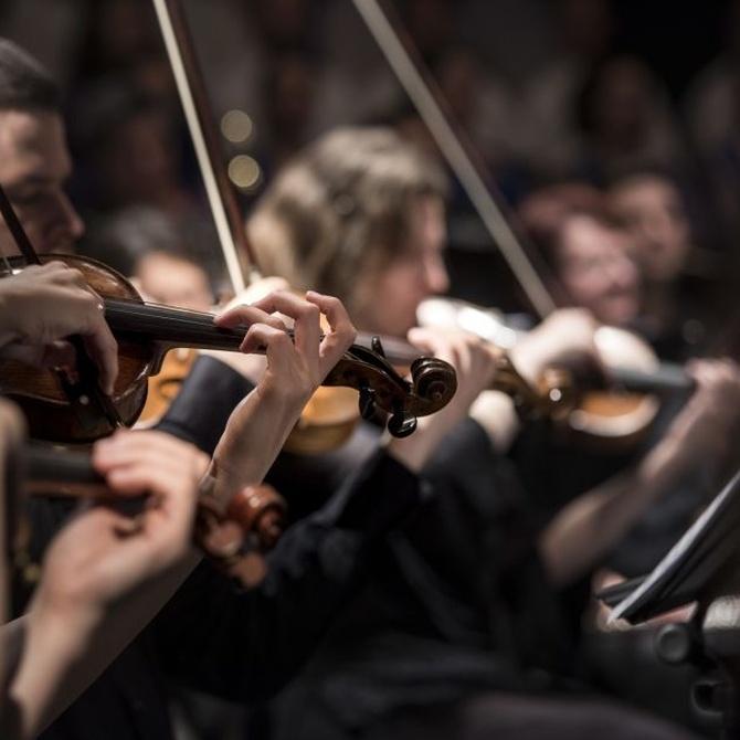 Razones para tocar el violín