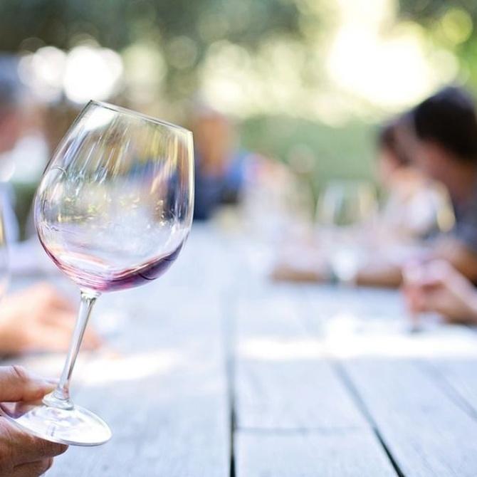Aprende las fases de una cata de vinos