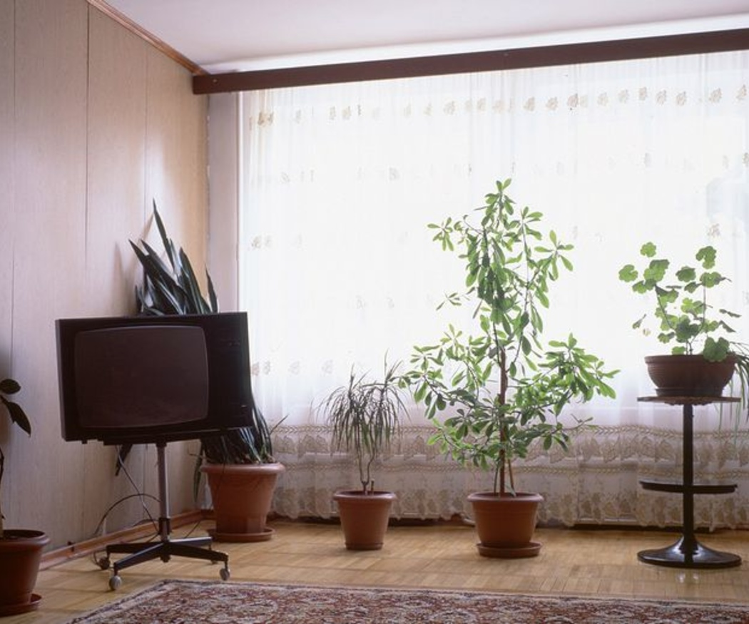 ¿En qué nos fijaremos para elegir las cortinas de nuestro salón?