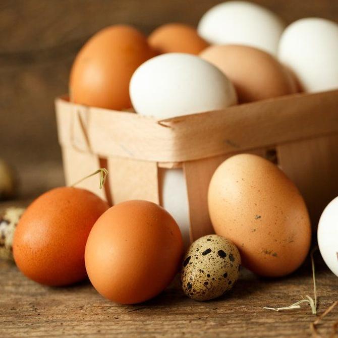 Otros beneficios de las claras de huevos