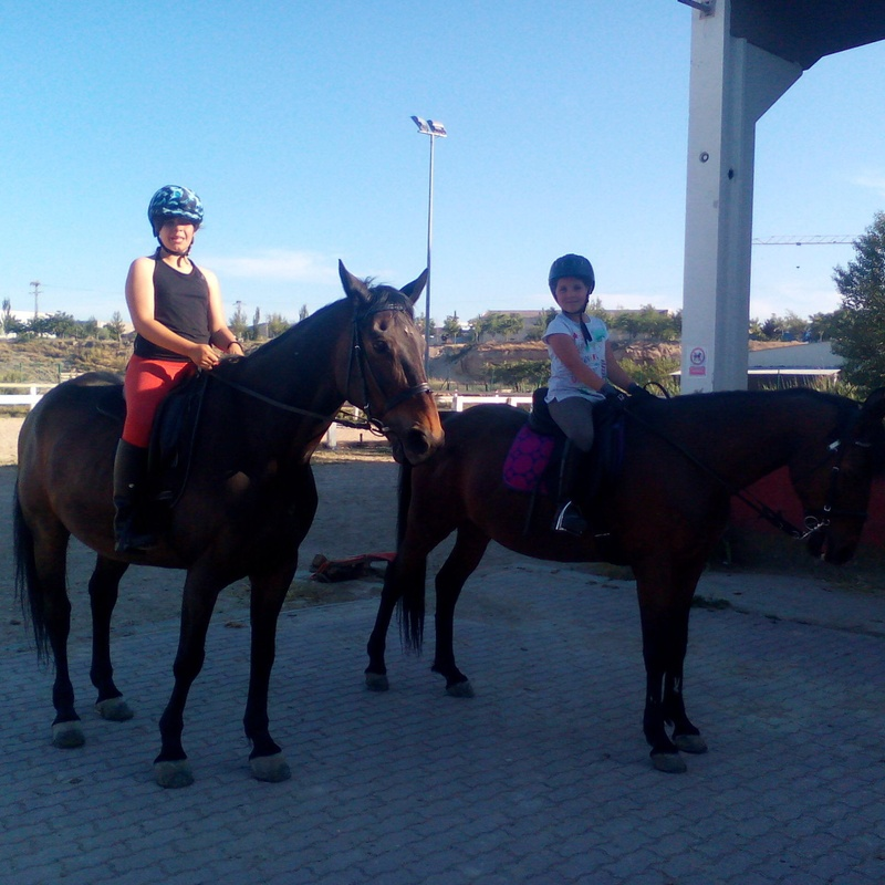ESCUELA DE EQUITACIÓN: Servicios de Hípica Riding School