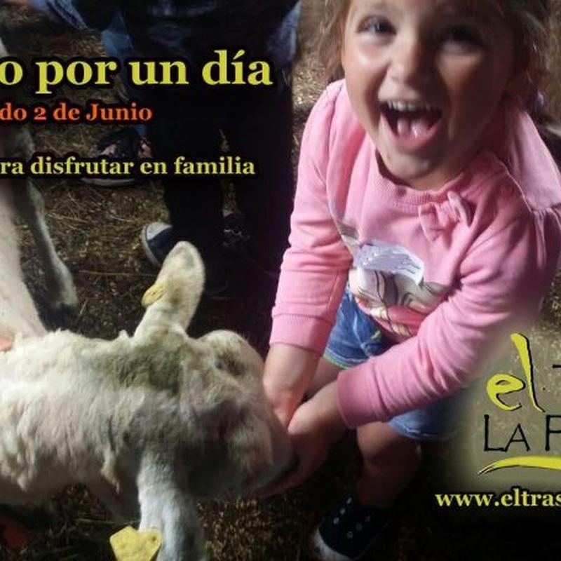 Visitas a la granja: Actividades de El Trasgu La Fronda