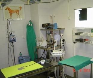 Kirurgia orokorra