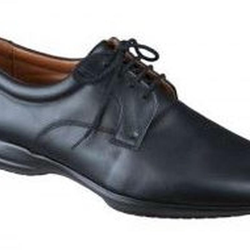 Zapato Camarero : Catálogo  de Bosch Comercial