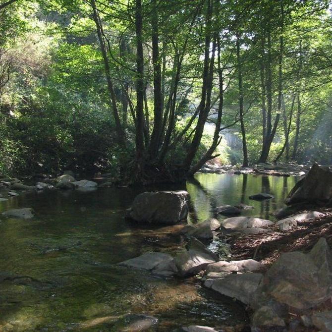 El parque natural del Montseny