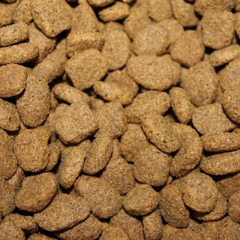 Alimentación de mascotas: Productos y Servicios de Mundo Mascota