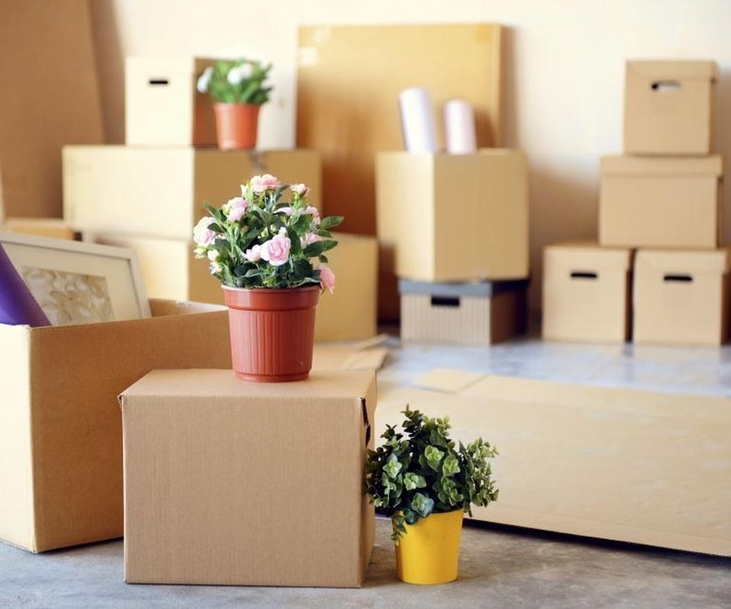 Dos formas de embalar tus pertenencias para una mudanza